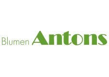 Blumen Antons